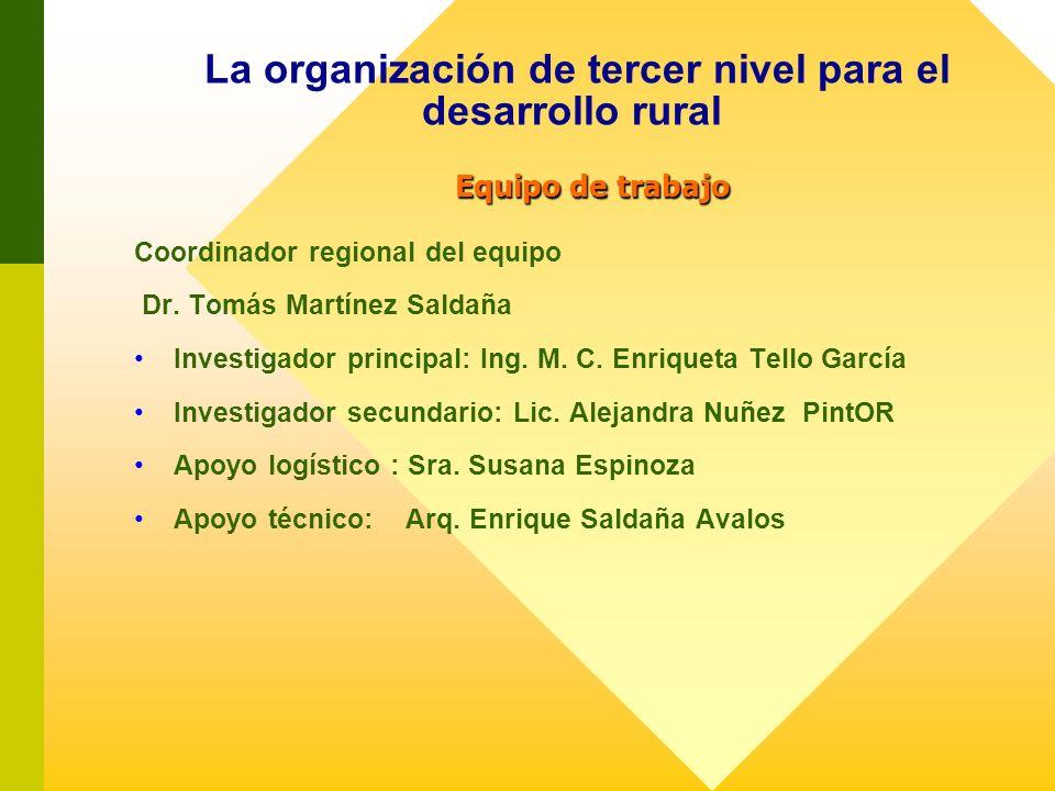 Equipo de trabajo La organización de tercer nivel para el desarrollo rural Equipo de trabajo Coordinador regional del equipo Dr. Tomás Martínez Saldañ
