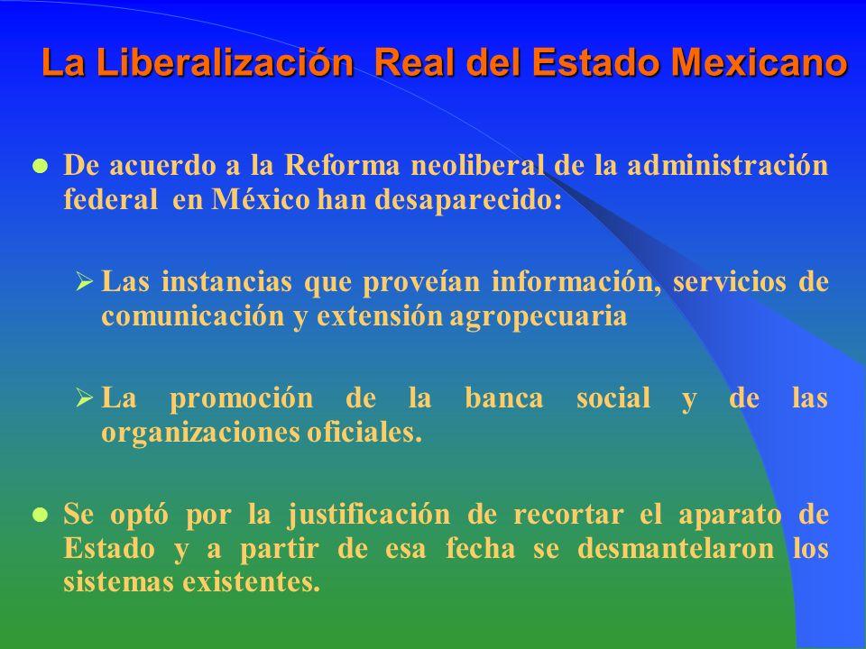 La Liberalización Real del Estado Mexicano De acuerdo a la Reforma neoliberal de la administración federal en México han desaparecido: Las instancias que proveían información, servicios de comunicación y extensión agropecuaria La promoción de la banca social y de las organizaciones oficiales.