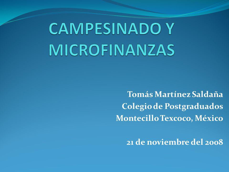 Tomás Martínez Saldaña Colegio de Postgraduados Montecillo Texcoco, México 21 de noviembre del 2008