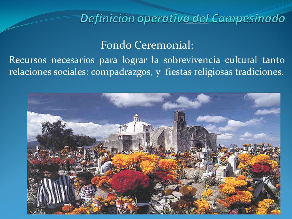 Fondo Ceremonial: Recursos necesarios para lograr la sobrevivencia cultural tanto relaciones sociales: compadrazgos, y fiestas religiosas tradiciones.