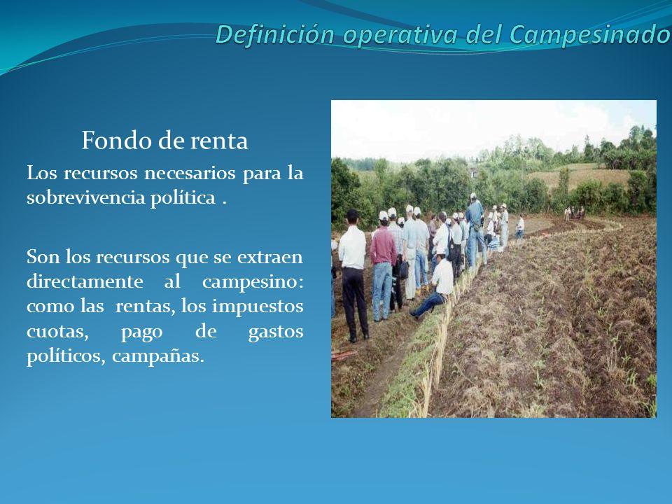 Beneficio La ganancia que le queda al campesino de su trabajo una vez cubiertos los anteriores costos de inversión: gastos suntuarios: