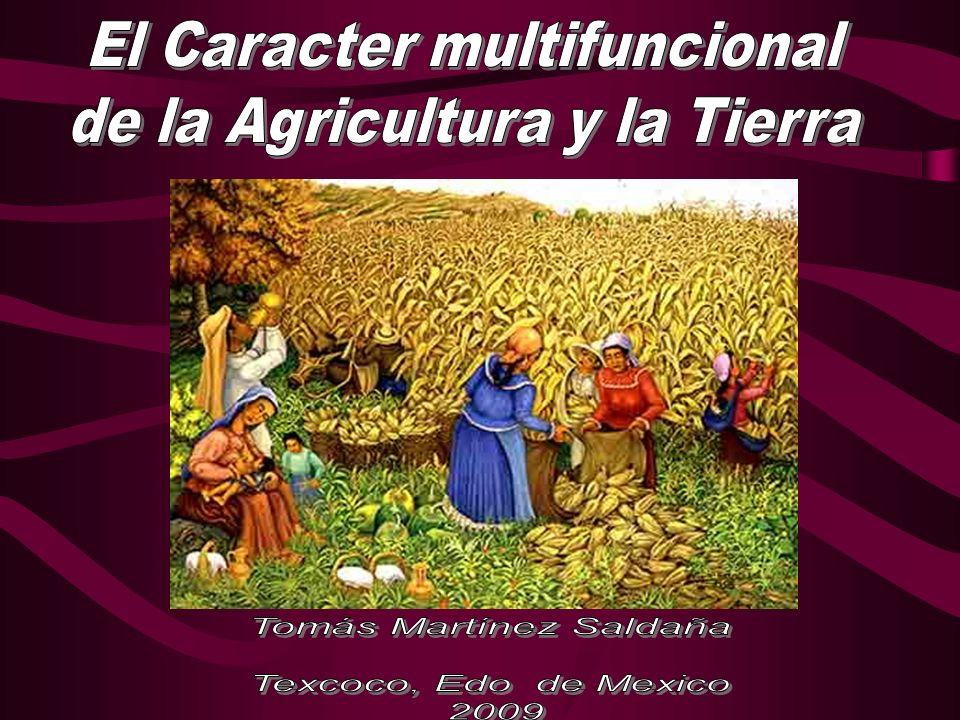 Documentos de Maastrich FAO 1998 Declaración del Carácter Multifuncional de la Agricultura FAO 1998 Roma Italia Martínez Saldaña Tomás, 2004 Martínez Saldaña Tomás, 2004 Criterios de política pública para el Sector agrícola en México,Consultoría UIA México.