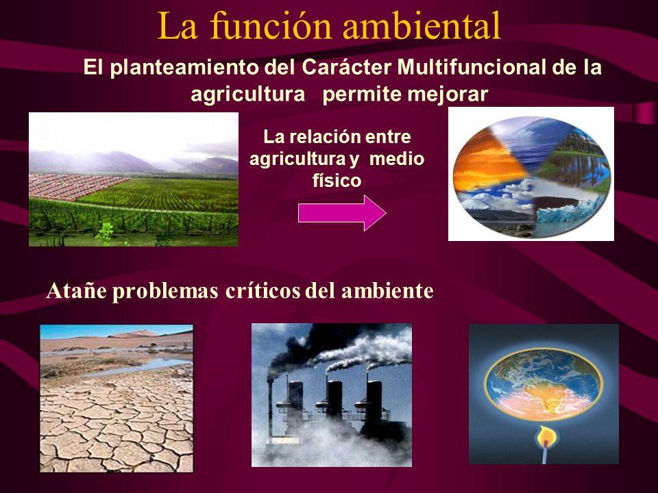 La función ambiental Atañe problemas críticos del ambiente La relación entre agricultura y medio físico El planteamiento del Carácter Multifuncional d