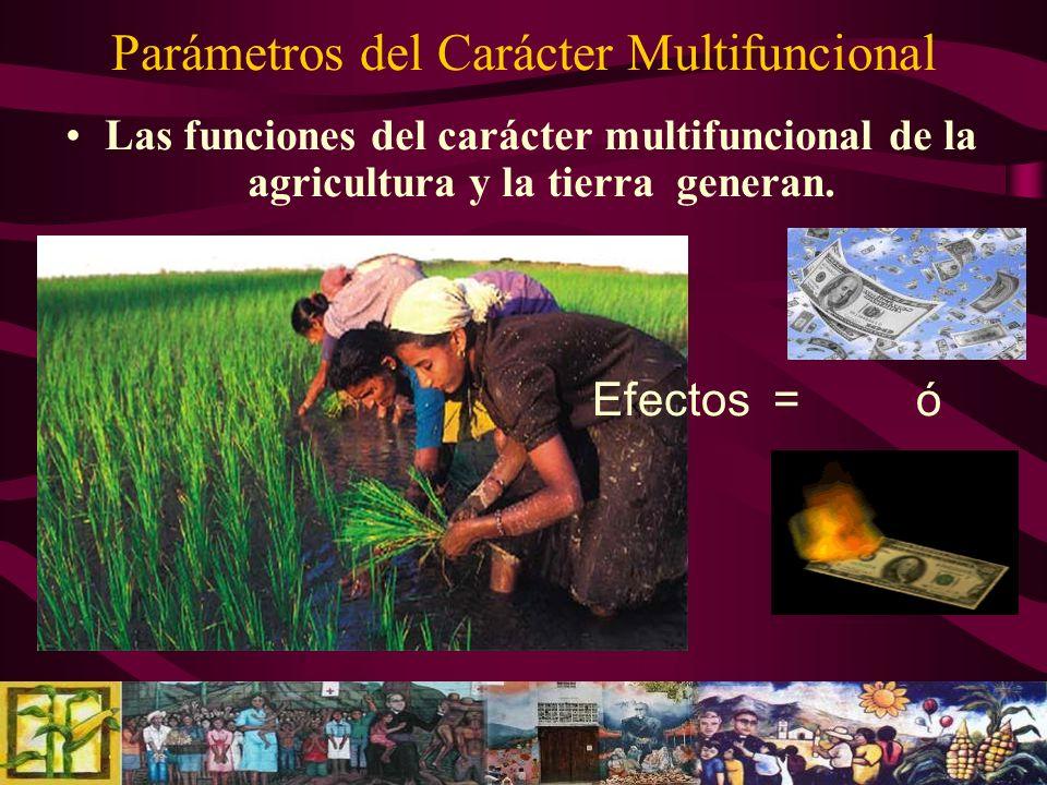 Parámetros del Carácter Multifuncional Las funciones del carácter multifuncional de la agricultura y la tierra generan. Efectos = ó