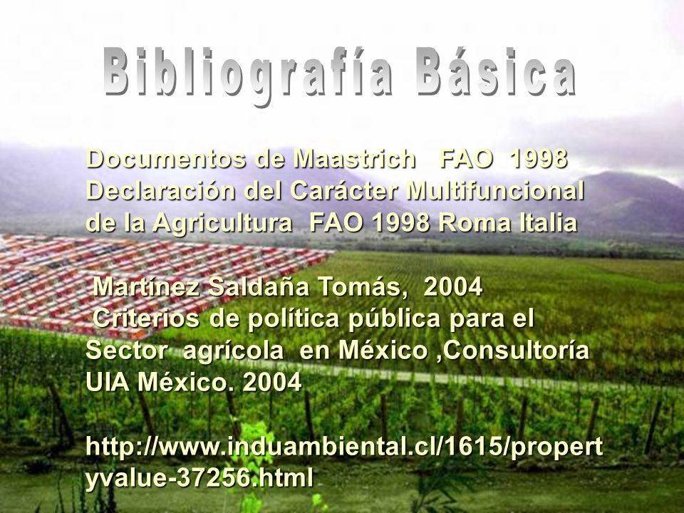 Documentos de Maastrich FAO 1998 Declaración del Carácter Multifuncional de la Agricultura FAO 1998 Roma Italia Martínez Saldaña Tomás, 2004 Martínez