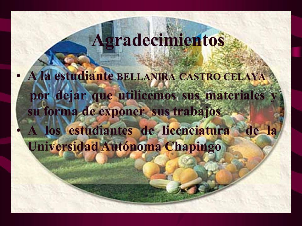 Agradecimientos A la estudiante BELLANIRA CASTRO CELAYA por dejar que utilicemos sus materiales y su forma de exponer sus trabajos A los estudiantes d