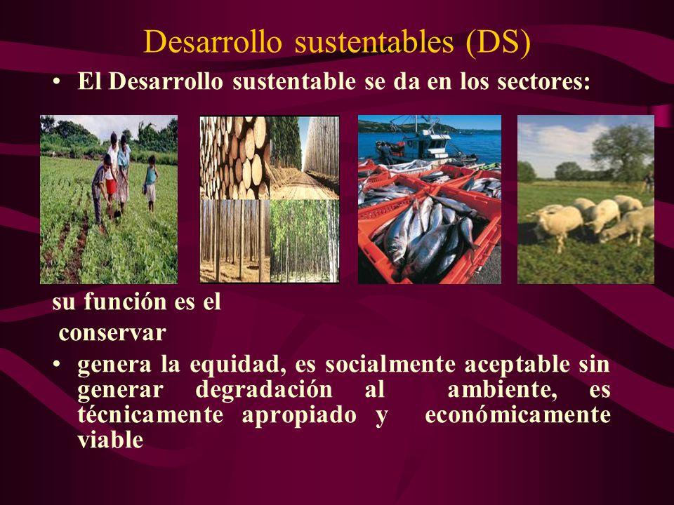 El Desarrollo sustentable se da en los sectores: su función es el conservar genera la equidad, es socialmente aceptable sin generar degradación al amb