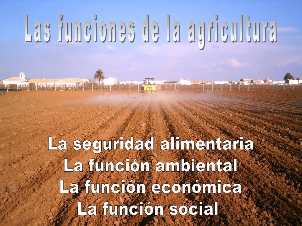 Seguridad Alimentaria Se interrelaciona con los factores ambientales, económicos y sociales.