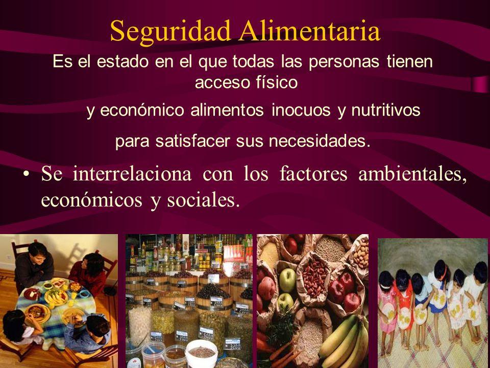 Seguridad Alimentaria Se interrelaciona con los factores ambientales, económicos y sociales. Es el estado en el que todas las personas tienen acceso f