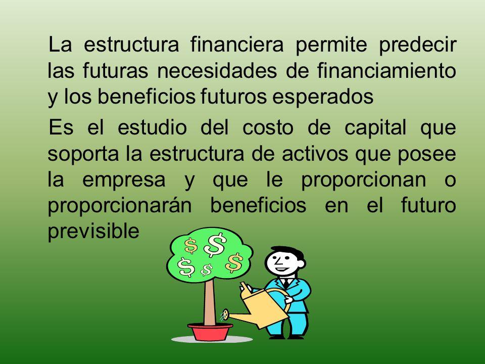 La estructura financiera permite predecir las futuras necesidades de financiamiento y los beneficios futuros esperados Es el estudio del costo de capi
