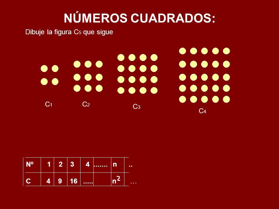 NÚMEROS CUADRADOS: Nº 1 2 3 4....... n.. C 4 9 16..... n … Dibuje la figura C 5 que sigue C1C1 C2C2 C3C3 C4C4