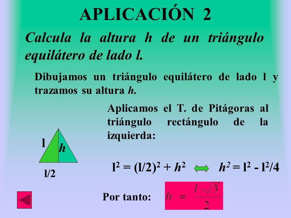 Dado un rectángulo de lados 9 y 12 cm., calcula su diagonal. Construimos un rectángulo de esas medidas. 9cm 12cm Trazamos su diagonal d d Y aplicando