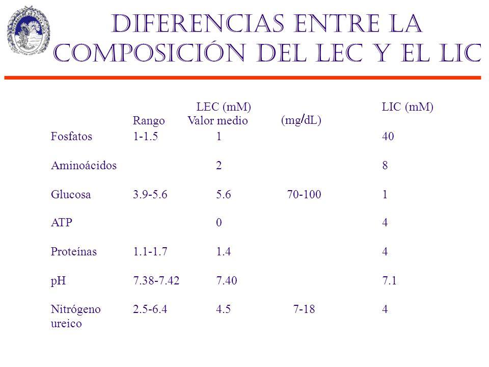 Diferencias entre la composición del LEC y el LIC Rango LEC (mM) Valor medio (mg dL) LIC (mM) Fosfatos1-1.5140 Aminoácidos28 Glucosa3.9-5.65.670-1001
