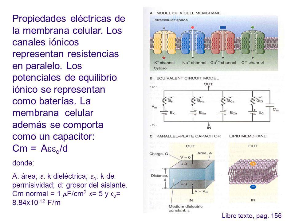 Propiedades eléctricas de la membrana celular. Los canales iónicos representan resistencias en paralelo. Los potenciales de equilibrio iónico se repre