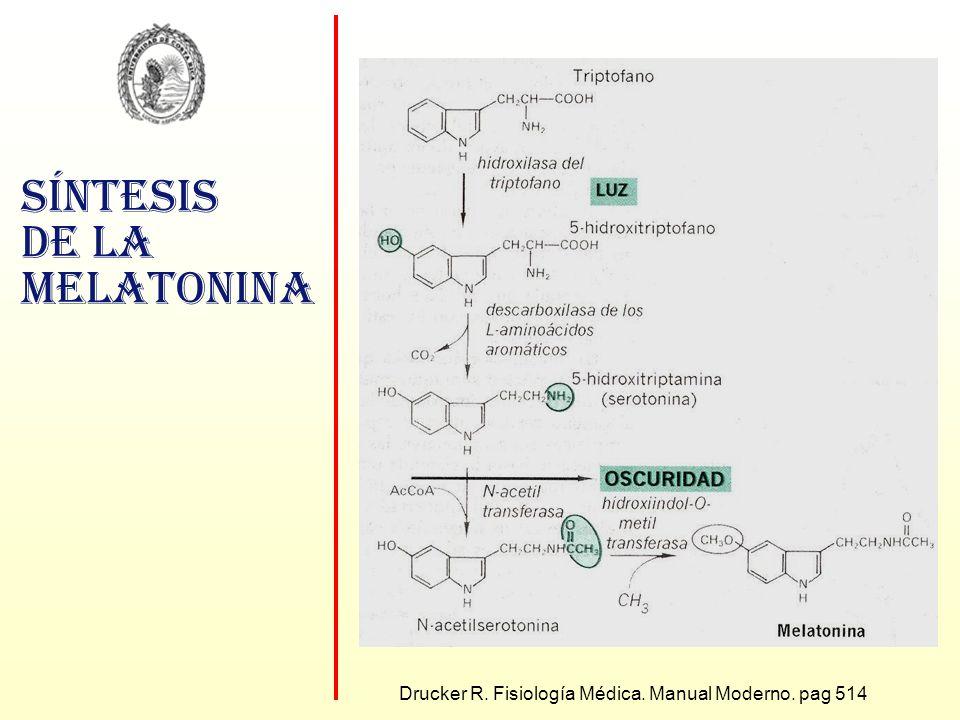 Síntesis de la melatonina Drucker R. Fisiología Médica. Manual Moderno. pag 514