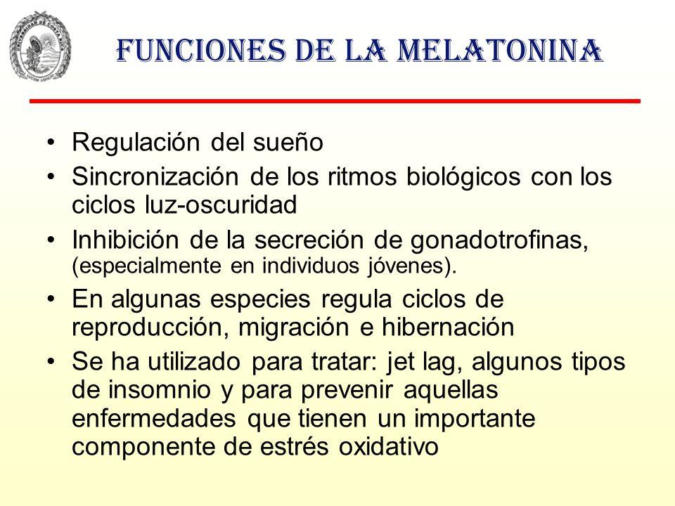 Funciones de la melatonina Regulación del sueño Sincronización de los ritmos biológicos con los ciclos luz-oscuridad Inhibición de la secreción de gon