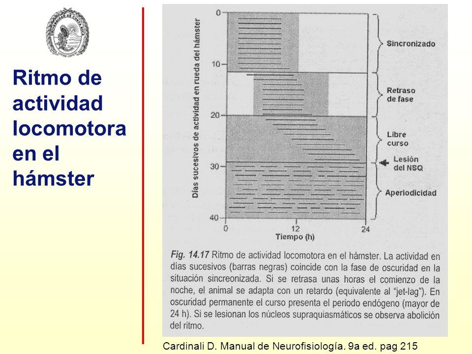 Ritmo de actividad locomotora en el hámster Cardinali D. Manual de Neurofisiología. 9a ed. pag 215