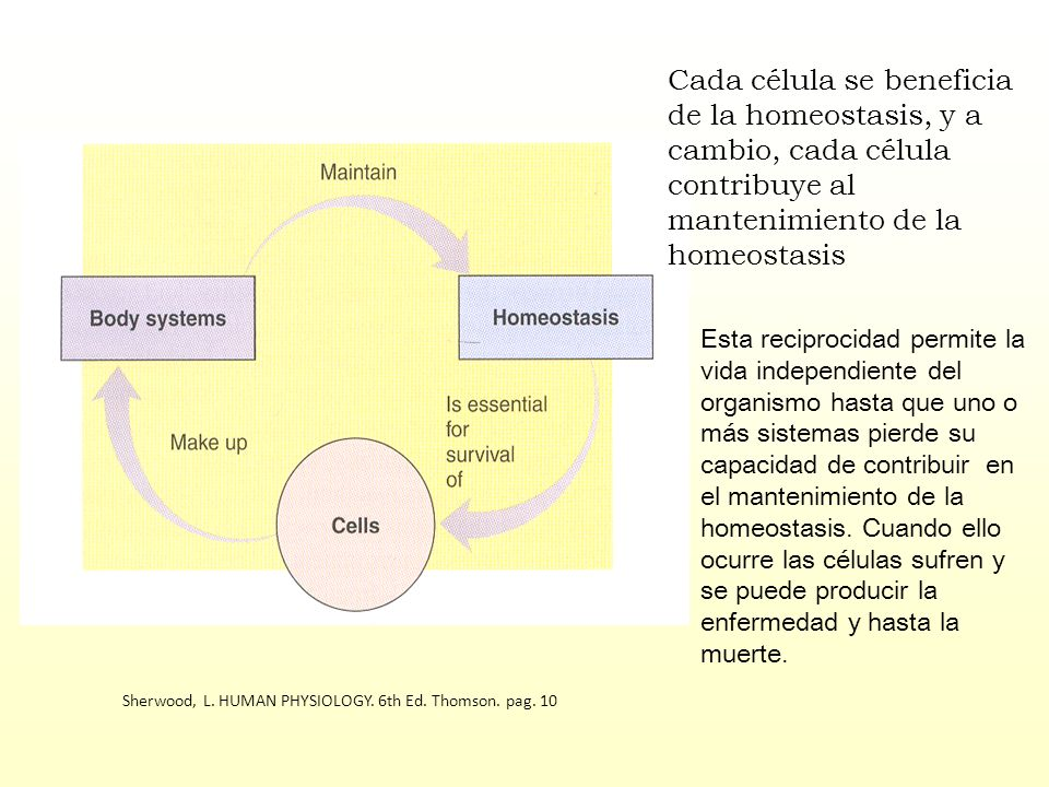 Sherwood, L. HUMAN PHYSIOLOGY. 6th Ed. Thomson. pag. 10 Cada célula se beneficia de la homeostasis, y a cambio, cada célula contribuye al mantenimient