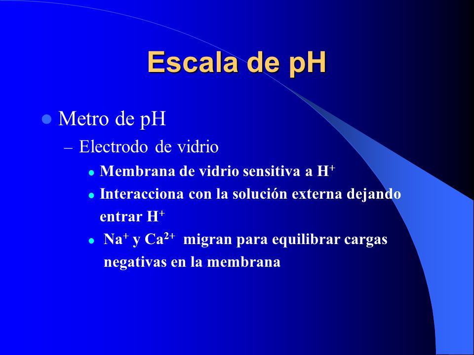 Escala de pH Metro de pH – Electrodo de vidrio Membrana de vidrio sensitiva a H + Interacciona con la solución externa dejando entrar H + Na + y Ca 2+