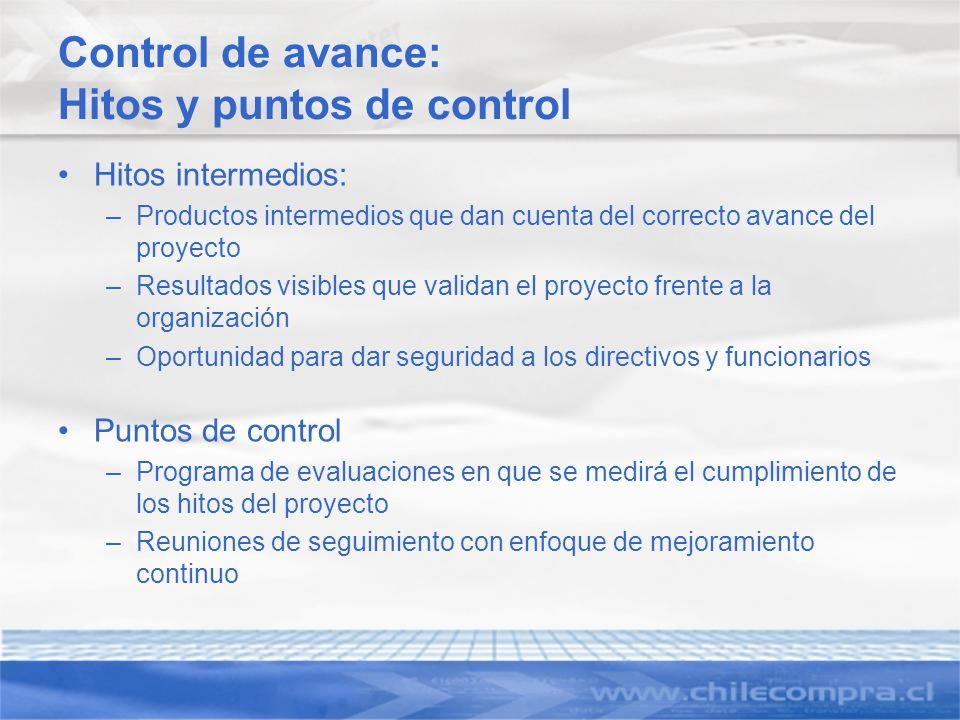 Control de avance: Hitos y puntos de control Hitos intermedios: –Productos intermedios que dan cuenta del correcto avance del proyecto –Resultados vis