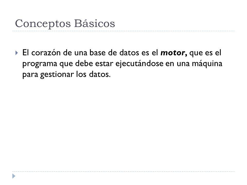 Funciones de las bases de datos a) Permitir la introducción de datos.