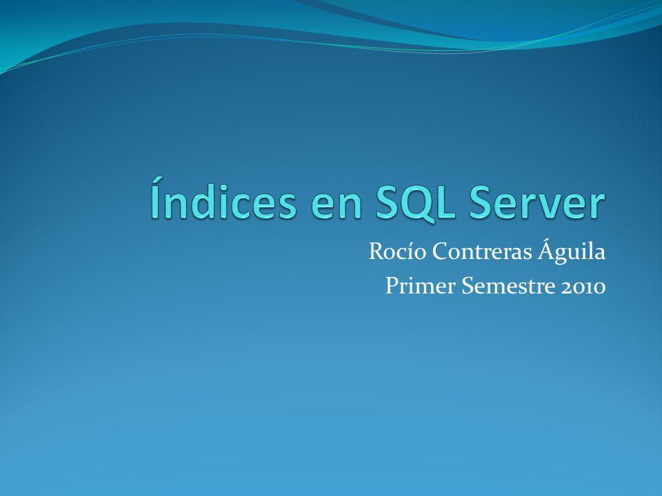 Rocío Contreras Águila Primer Semestre 2010