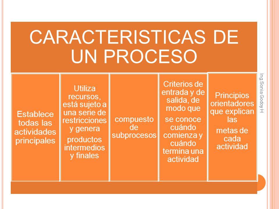 CARACTERISTICAS DE UN PROCESO Establece todas las actividades principales Utiliza recursos, está sujeto a una serie de restricciones y genera producto