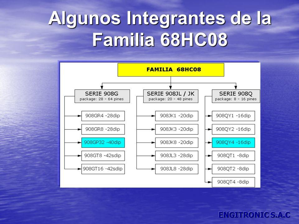 Algunos Integrantes de la Familia 68HC08