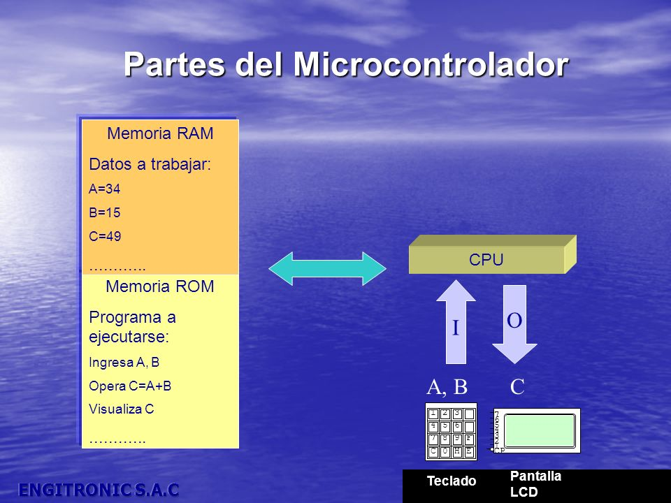 Partes del Microcontrolador Memoria ROM Programa a ejecutarse: Ingresa A, B Opera C=A+B Visualiza C............ Memoria RAM Datos a trabajar: A=34 B=1