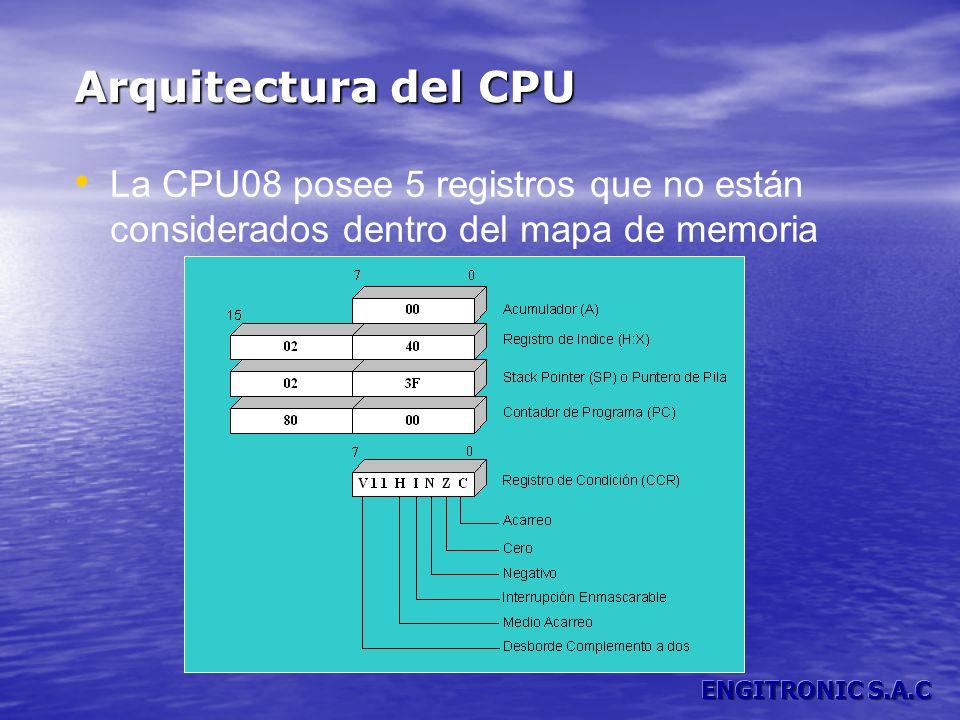Arquitectura del CPU La CPU08 posee 5 registros que no están considerados dentro del mapa de memoria