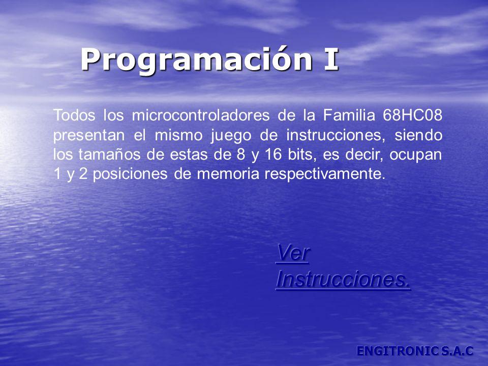 Programación I Todos los microcontroladores de la Familia 68HC08 presentan el mismo juego de instrucciones, siendo los tamaños de estas de 8 y 16 bits