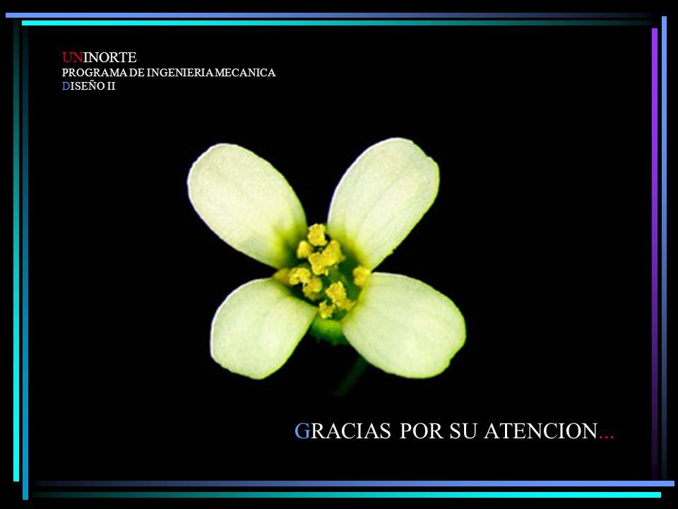 GRACIAS POR SU ATENCION... UNINORTE PROGRAMA DE INGENIERIA MECANICA DISEÑO II