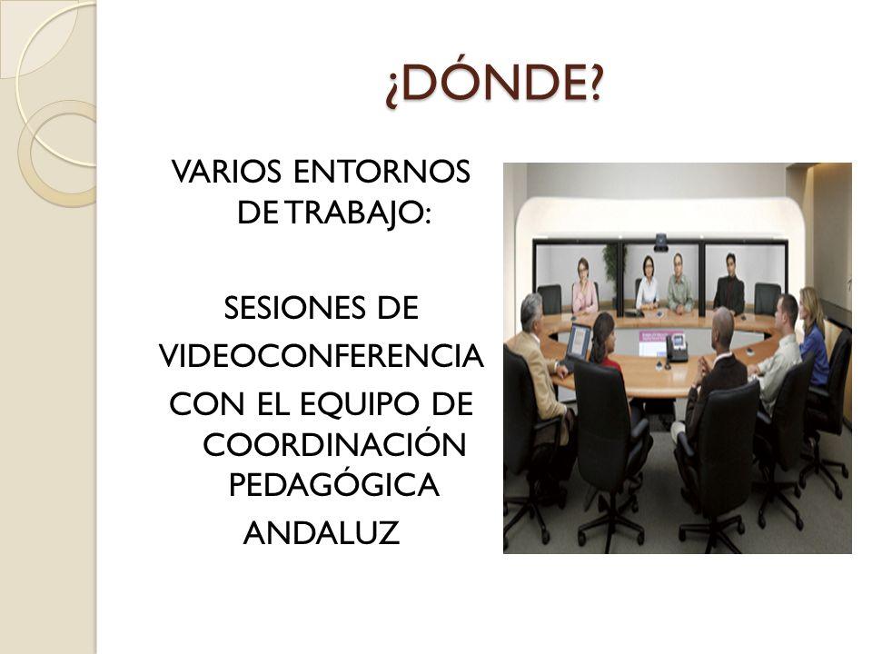 ¿DÓNDE? VARIOS ENTORNOS DE TRABAJO: SESIONES DE VIDEOCONFERENCIA CON EL EQUIPO DE COORDINACIÓN PEDAGÓGICA ANDALUZ