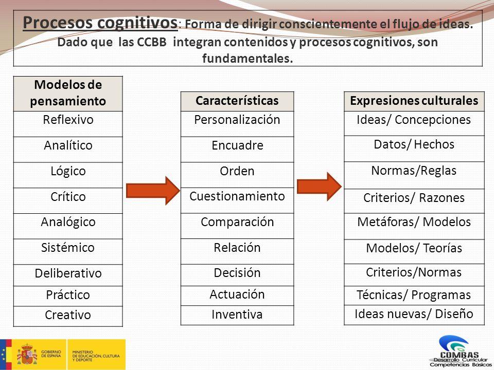 Características Personalización Encuadre Orden Cuestionamiento Comparación Relación Decisión Actuación Inventiva Expresiones culturales Ideas/ Concepc