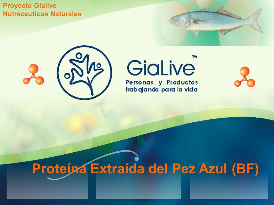 Proteína Extraída del Pez Azul (BF) Proyecto Gialive Nutraceuticos Naturales