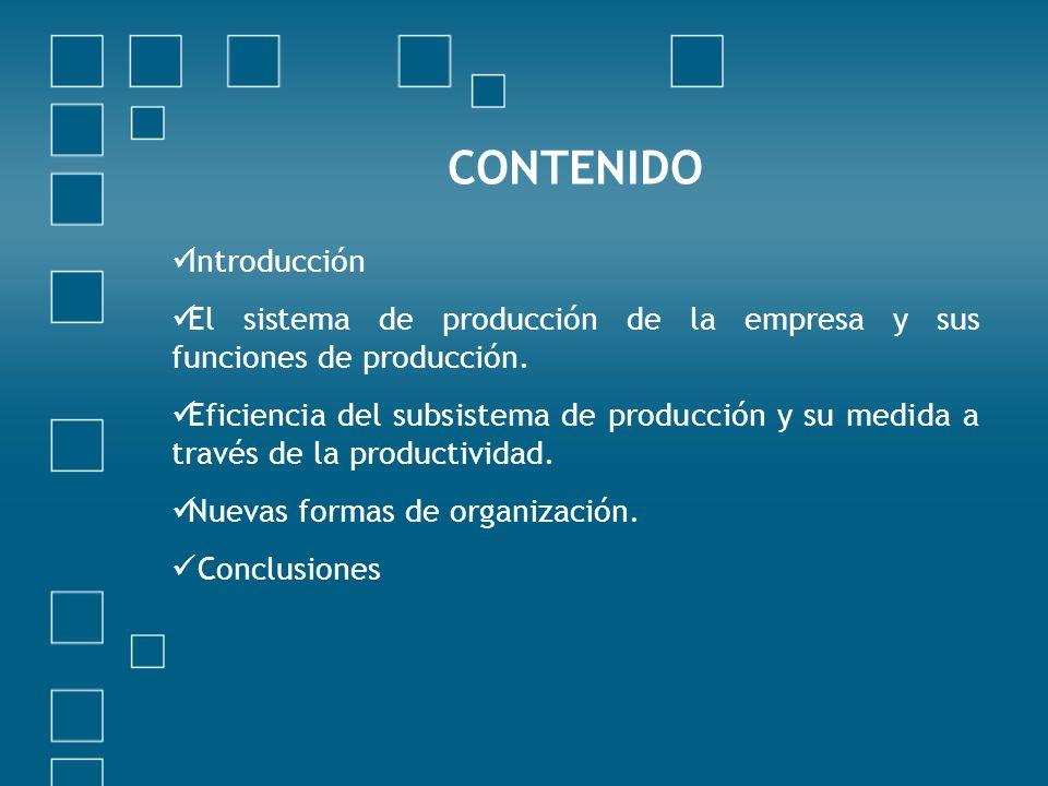 Introducción El sistema de producción de la empresa y sus funciones de producción. Eficiencia del subsistema de producción y su medida a través de la