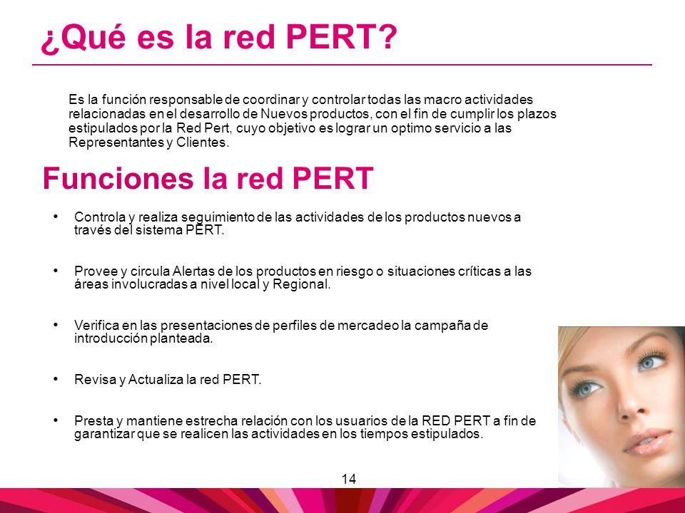 14 ¿Qué es la red PERT? Es la función responsable de coordinar y controlar todas las macro actividades relacionadas en el desarrollo de Nuevos product