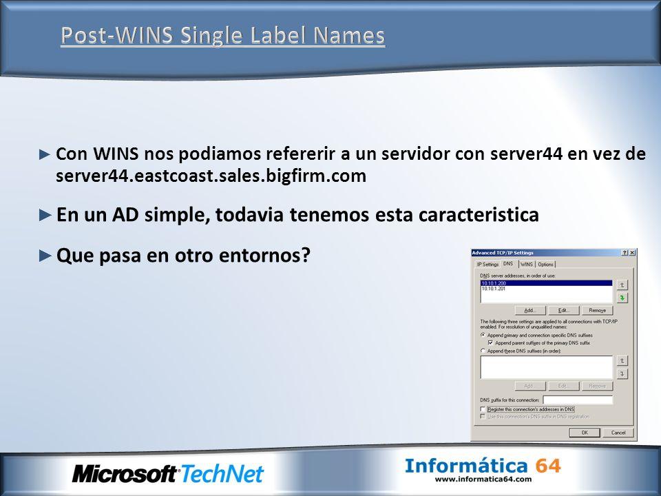 Con WINS nos podiamos refererir a un servidor con server44 en vez de server44.eastcoast.sales.bigfirm.com En un AD simple, todavia tenemos esta caracteristica Que pasa en otro entornos