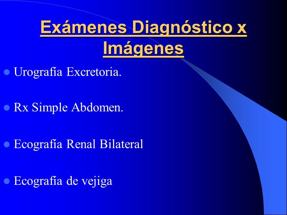 Exámenes Diagnóstico x Imágenes Urografía Excretoria. Rx Simple Abdomen. Ecografía Renal Bilateral Ecografía de vejiga