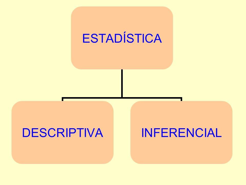 ESTADÍSTICA DESCRIPTIVA Trata de describir y analizar algunos caracteres del grupo objeto de estudio.