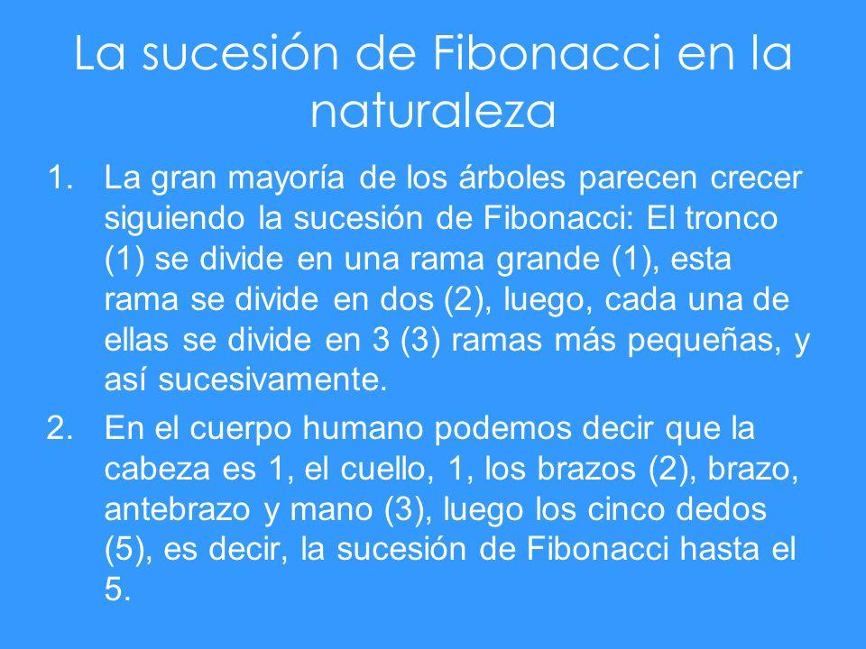 La sucesión de Fibonacci en la naturaleza 1.La gran mayoría de los árboles parecen crecer siguiendo la sucesión de Fibonacci: El tronco (1) se divide