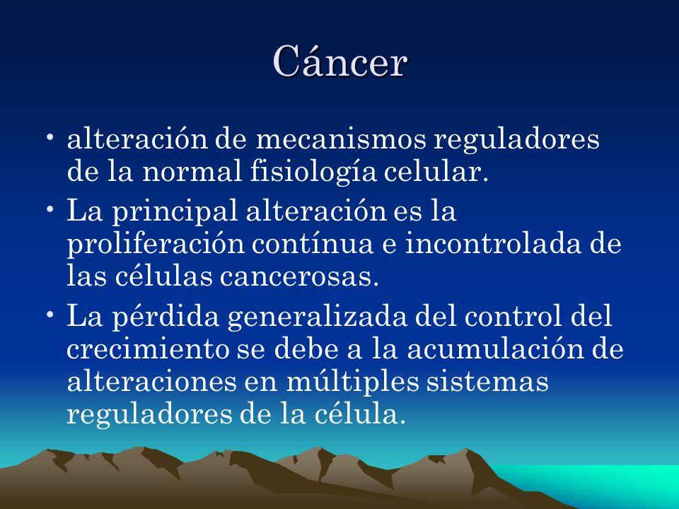 Diagnóstico Molecular El análisis molecular de los oncogenes y de los genes supresores de tumores implicados en determinados tipos de tumores puede proporcionar información útil para el diagnóstico del cáncer y para el seguimiento de los efectos del tratamiento.