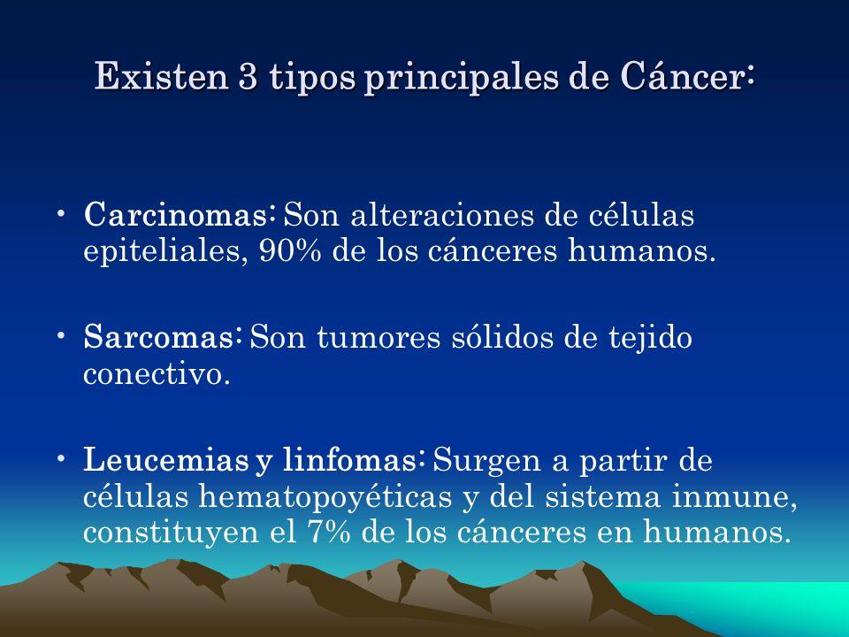 Existen 3 tipos principales de Cáncer: Carcinomas: Son alteraciones de células epiteliales, 90% de los cánceres humanos. Sarcomas: Son tumores sólidos
