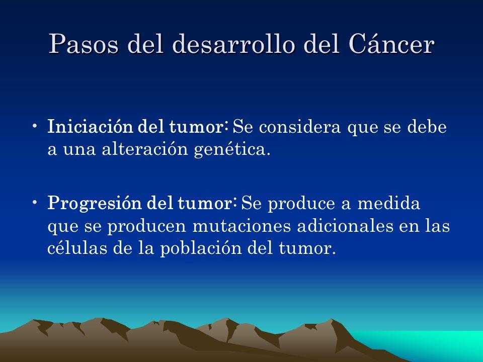 Pasos del desarrollo del Cáncer Iniciación del tumor: Se considera que se debe a una alteración genética. Progresión del tumor: Se produce a medida qu
