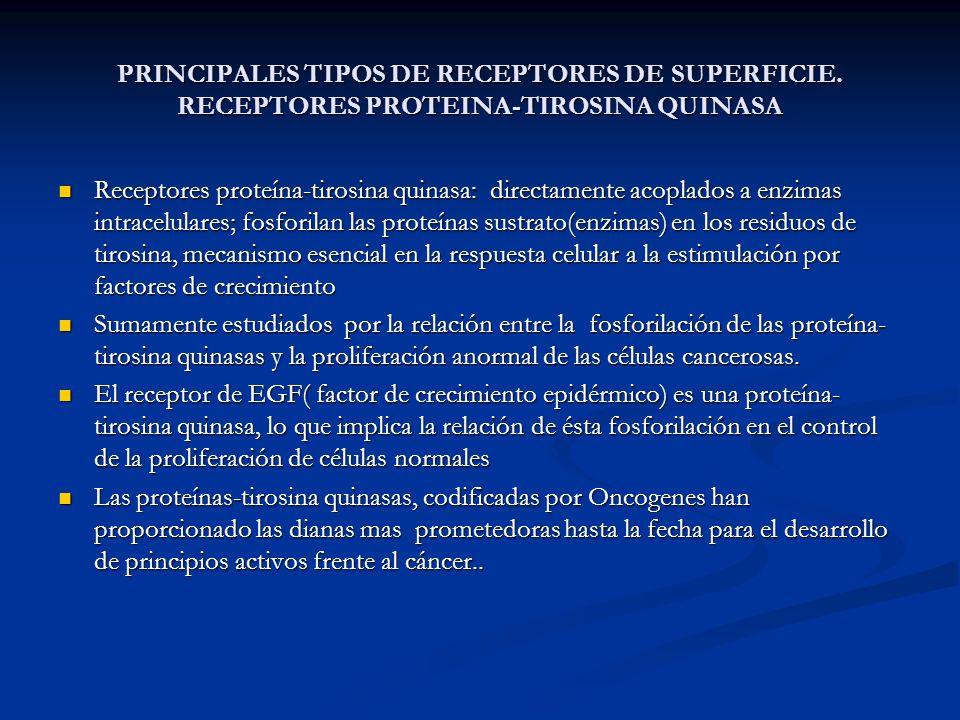 PRINCIPALES TIPOS DE RECEPTORES DE SUPERFICIE. RECEPTORES PROTEINA-TIROSINA QUINASA Receptores proteína-tirosina quinasa: directamente acoplados a enz