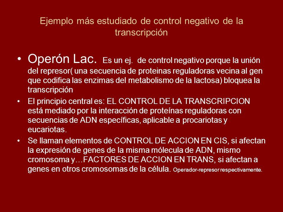Ejemplo más estudiado de control negativo de la transcripción Operón Lac. Es un ej. de control negativo porque la unión del represor( una secuencia de