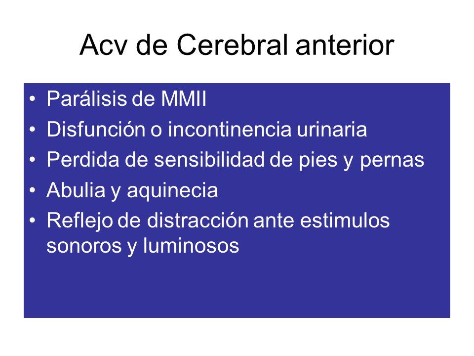 Acv de Cerebral anterior Parálisis de MMII Disfunción o incontinencia urinaria Perdida de sensibilidad de pies y pernas Abulia y aquinecia Reflejo de