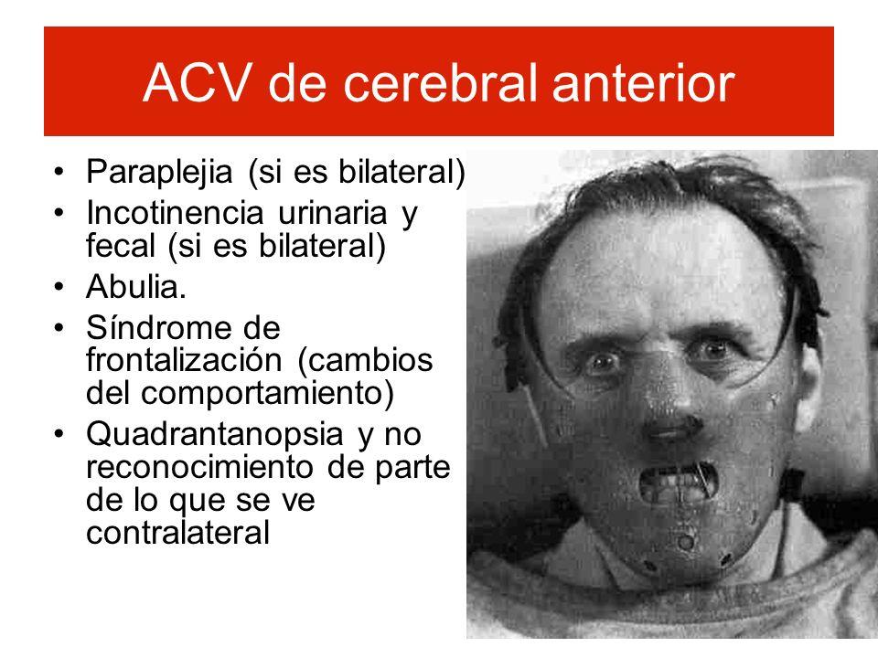 ACV de cerebral anterior Paraplejia (si es bilateral) Incotinencia urinaria y fecal (si es bilateral) Abulia. Síndrome de frontalización (cambios del