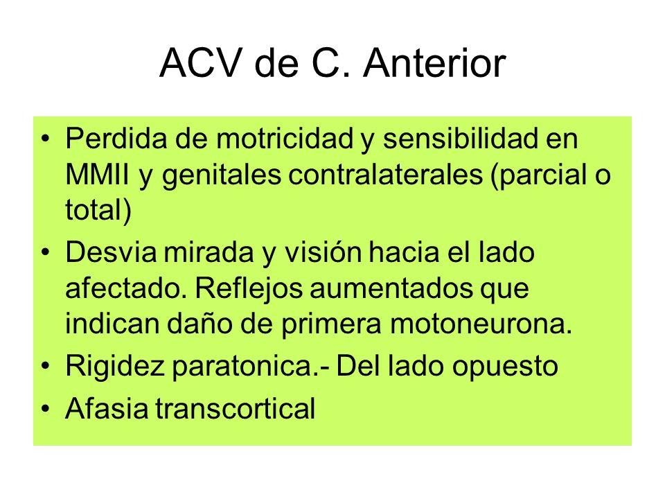 ACV de C. Anterior Perdida de motricidad y sensibilidad en MMII y genitales contralaterales (parcial o total) Desvia mirada y visión hacia el lado afe