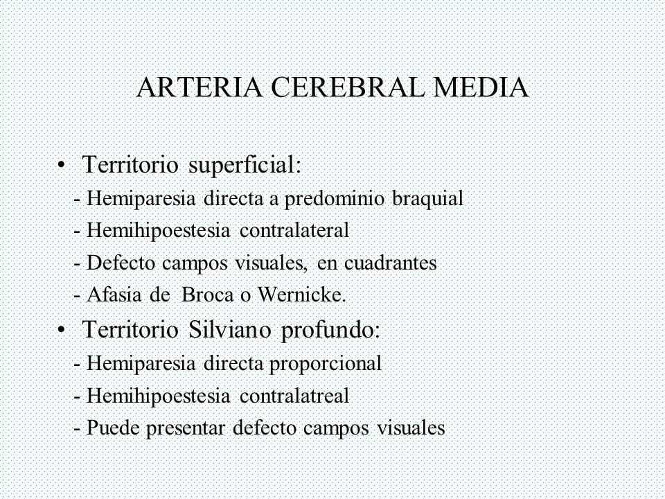 ARTERIA CEREBRAL MEDIA Territorio superficial: - Hemiparesia directa a predominio braquial - Hemihipoestesia contralateral - Defecto campos visuales,